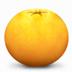 橘子水印添加器下载_橘子水印添加器 V1.0 绿色安装版